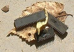 Speicherchips